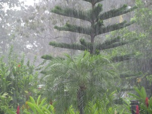 I've been caught in a downpour in Honduras.