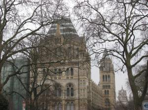 My destination--the Natural History Museum