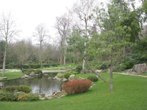The Japanese Garden in Holland Park