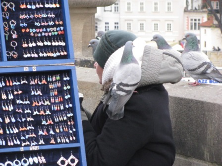 This woman sells jewelry on Charles Bridge in Prague. The birds really like her.