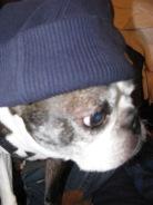 Rapper Miles