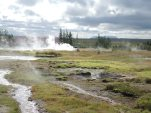 Geysers in Iceland